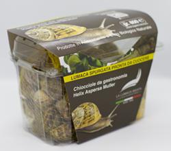 Allevamento di lumache Linea Food